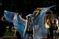 Wings at Motion Notion 2012 by Grant-oh Buchwald